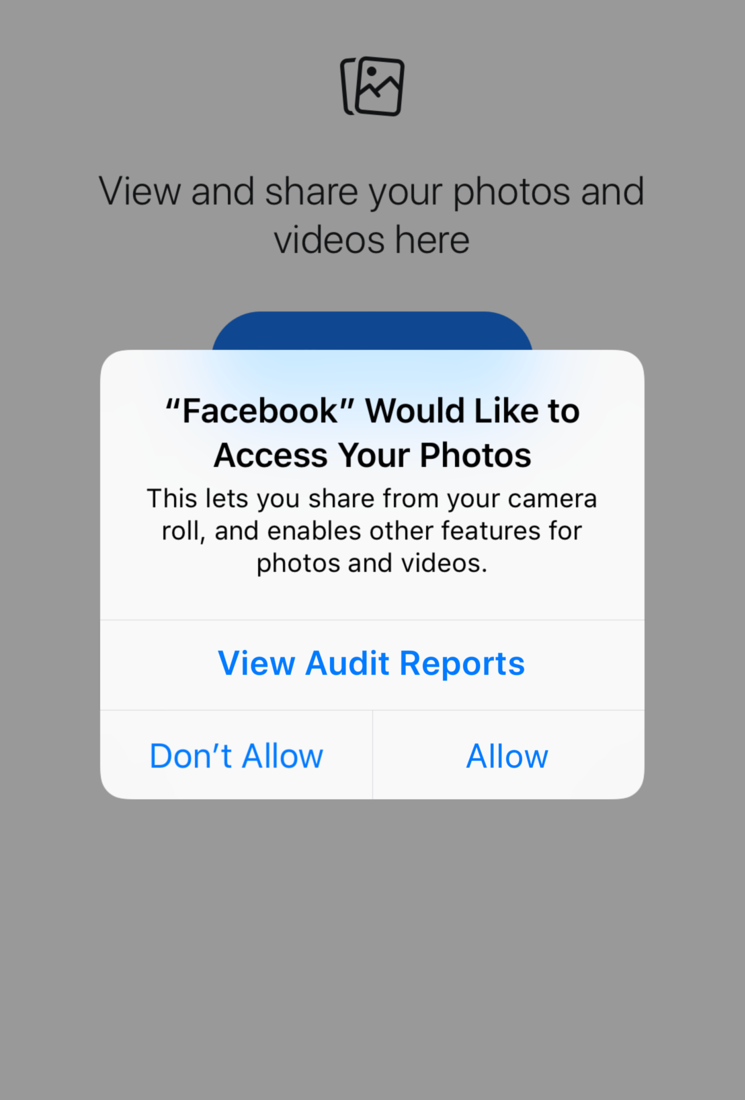 Giving the user critical audit information before allowing an app to access to their data.